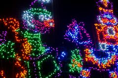20161229_FestivalOfLights-0043
